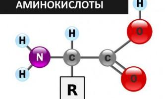 Аминокислоты: bcaa, аргинин, глютамин.
