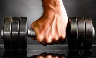 Что нужно чтобы росли мышцы?