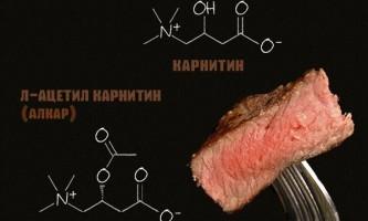 Что такое l-карнитин и как его принимать