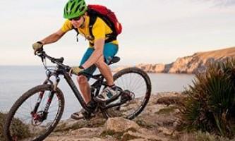 Кому подойдет велосипед bergamont (бергамот): цена, отзывы, основные характеристики