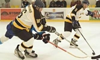 Отбор шайбы в хоккее