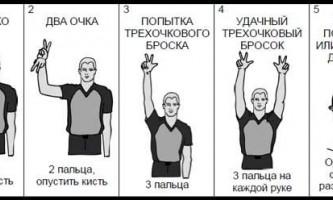 Правила баскетбола: жесты судей в баскетболе