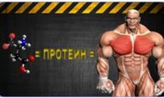 Протеин. Его виды и советы по приему