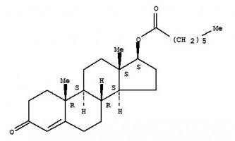 Тестостерон энантат — описание препарата (профиль), курс, побочные эффекты