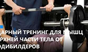 Тренинг для мышц верхней части тела