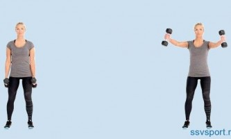 Упражнения с гантелями дома для плеч