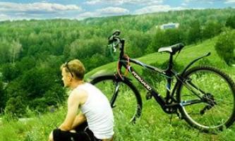 Велосипед forward (форвард). Фото, цены отзывы